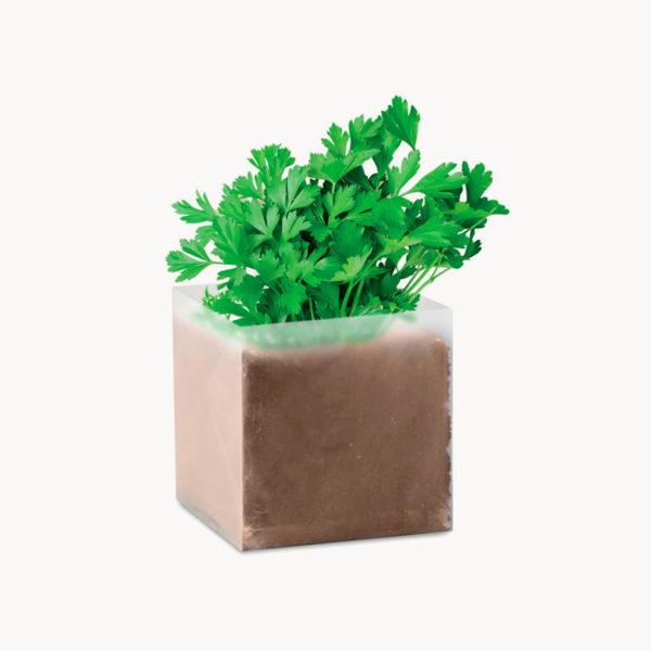 bolsita-semillas-hierbas-aromaticas-perejil
