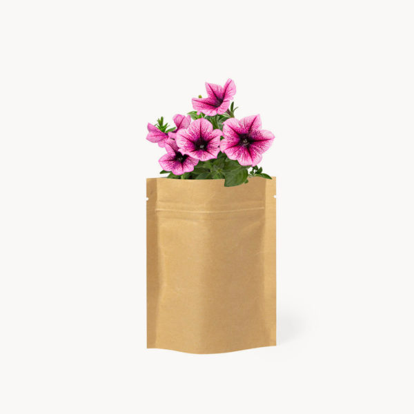 semillas-petunia-bolsa-papel