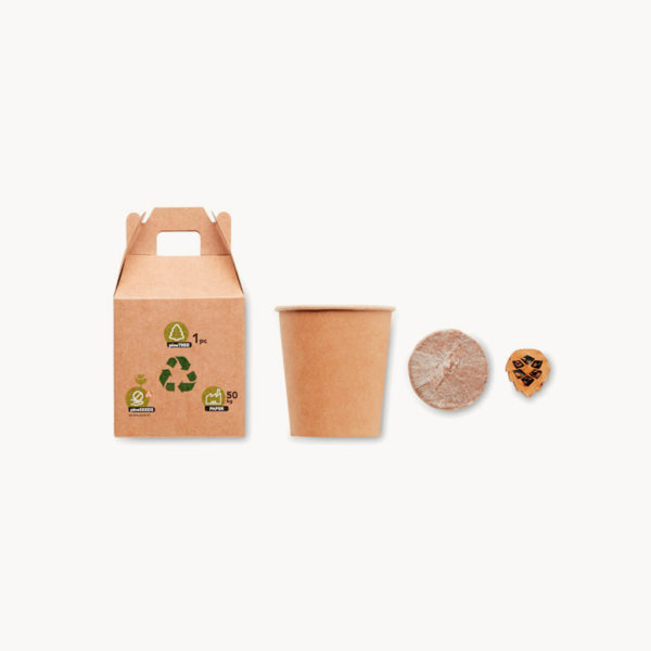 set-jardineria-semillas-pino-detalles