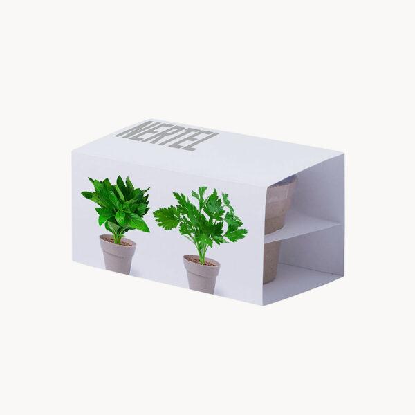 set-macetas-biodegradables-semillas-caja