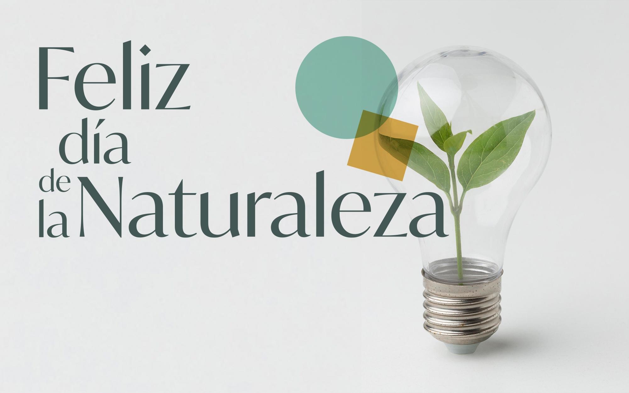 dia_mundia_naturaleza_por_que_se_celebra_miniatura_post_blog